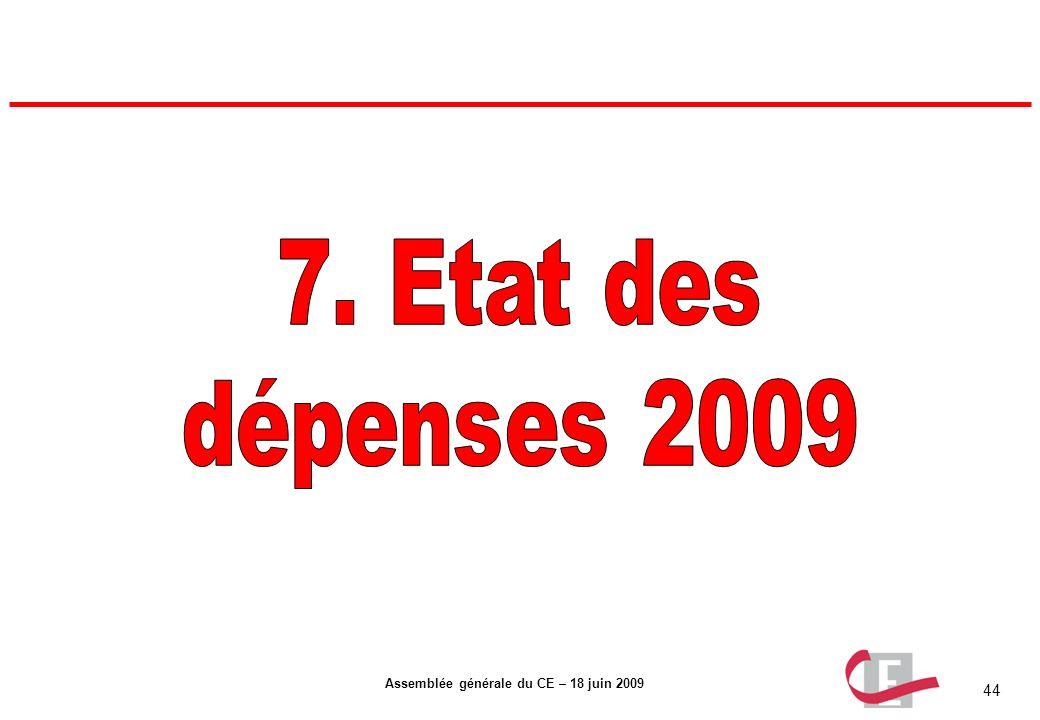 7. Etat des dépenses 2009