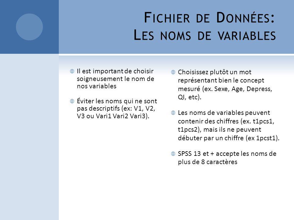 Fichier de Données: Les noms de variables