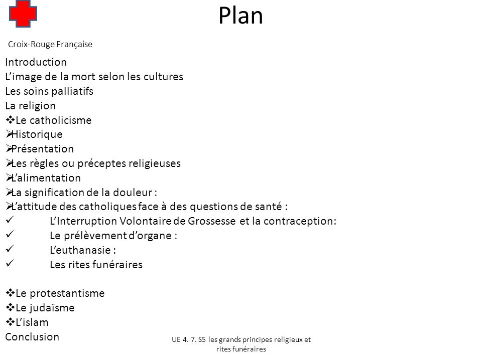 Plan Introduction L'image de la mort selon les cultures