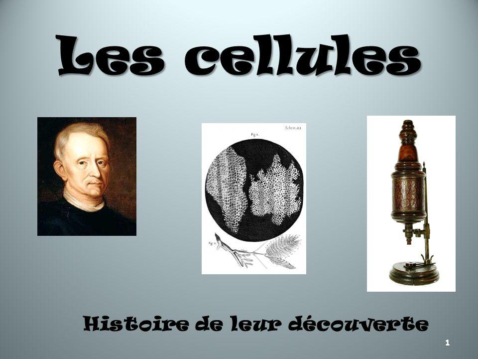Histoire de leur découverte