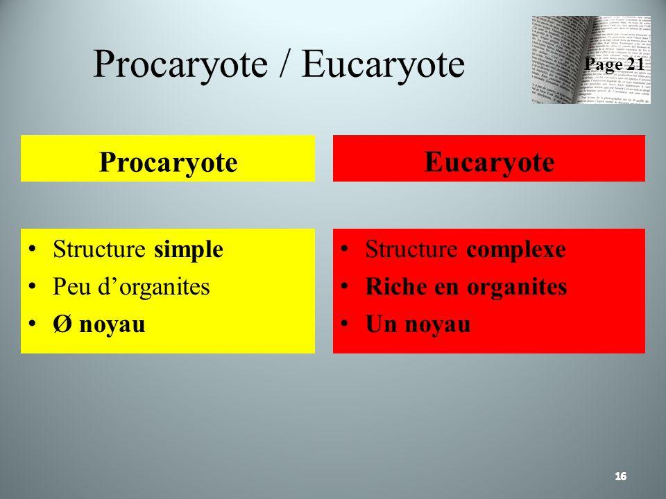 Procaryote / Eucaryote