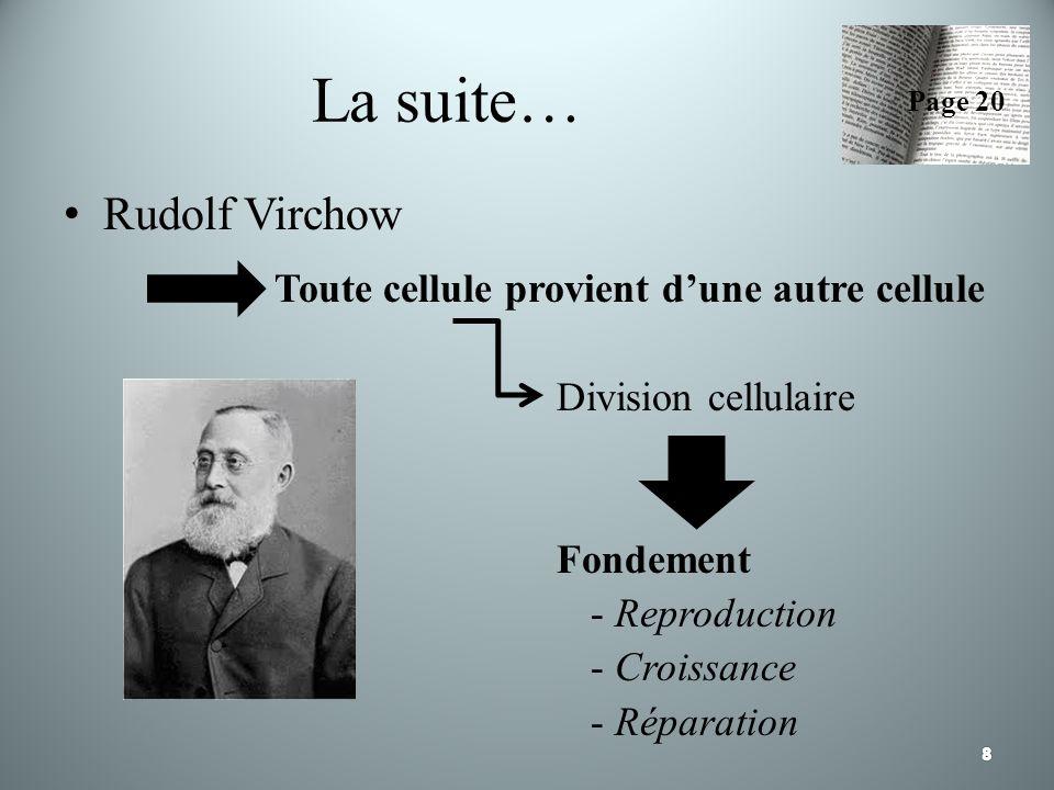 La suite… Rudolf Virchow Toute cellule provient d'une autre cellule