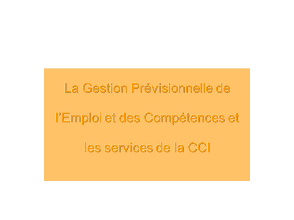 La Gestion Prévisionnelle de l'Emploi et des Compétences et les services de la CCI