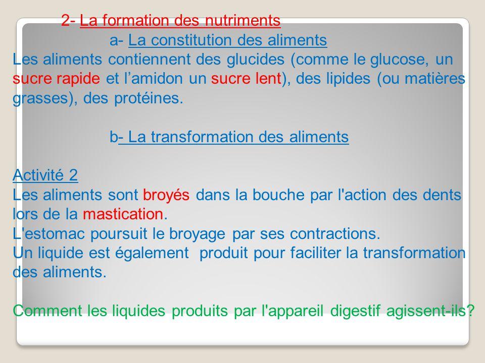 2- La formation des nutriments