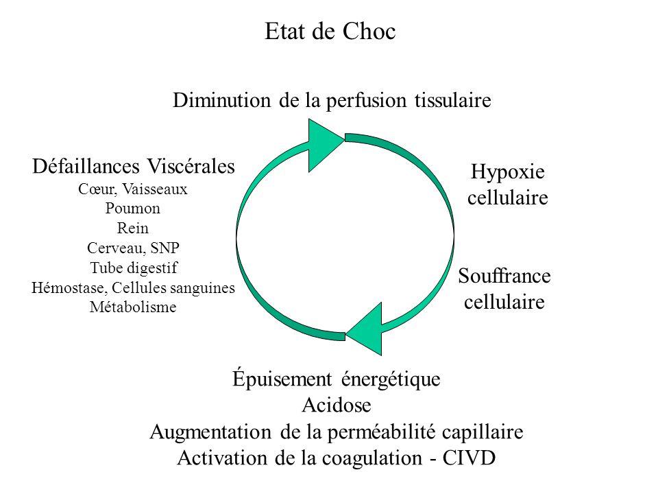 Etat de Choc Diminution de la perfusion tissulaire