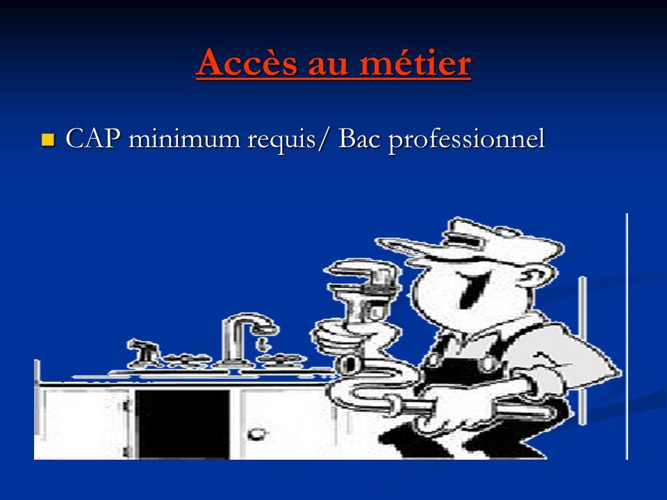 Accès au métier CAP minimum requis/ Bac professionnel