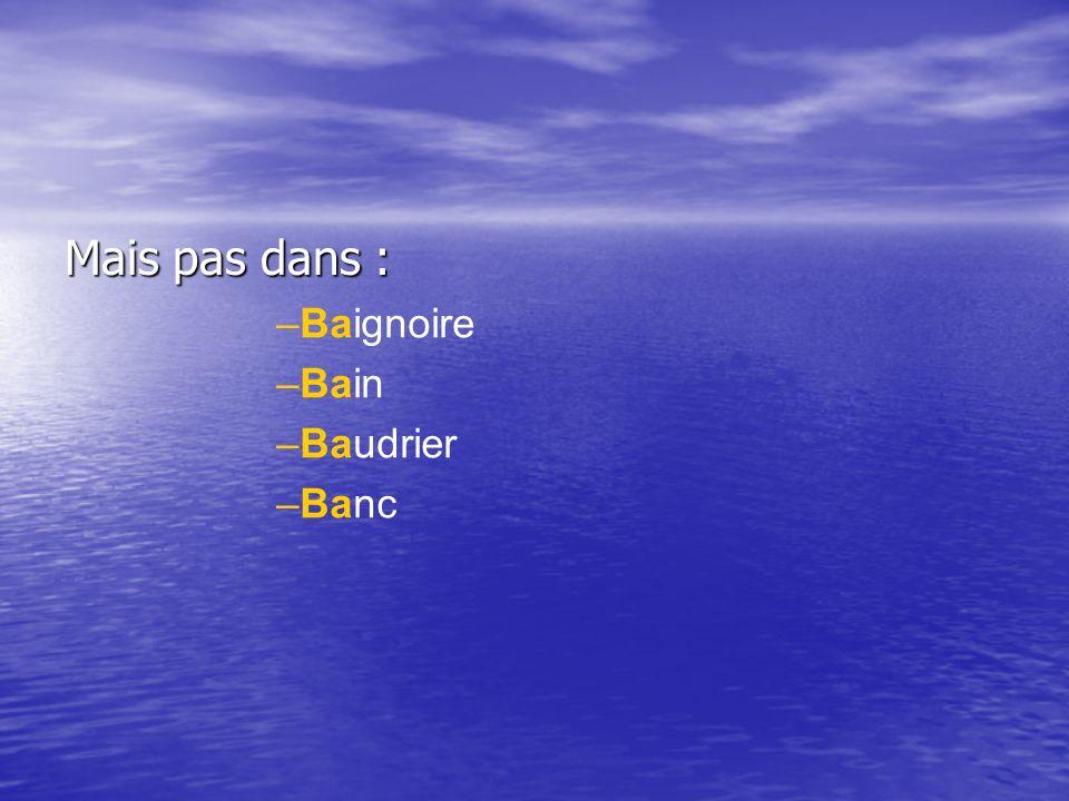 Mais pas dans : Baignoire Bain Baudrier Banc