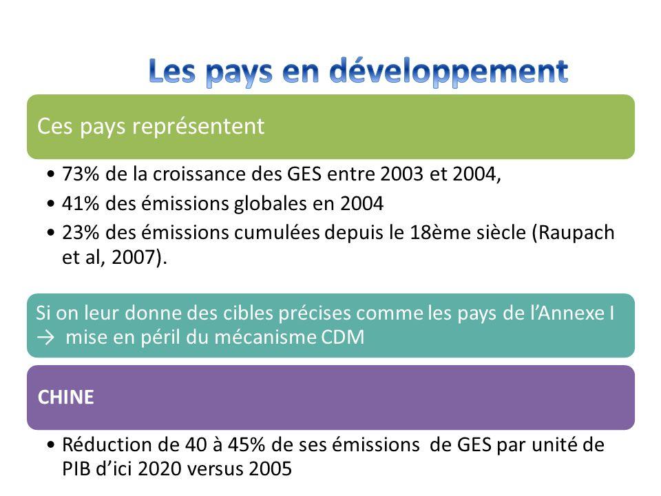 Les pays en développement