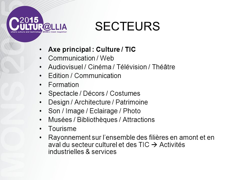 SECTEURS Axe principal : Culture / TIC Communication / Web