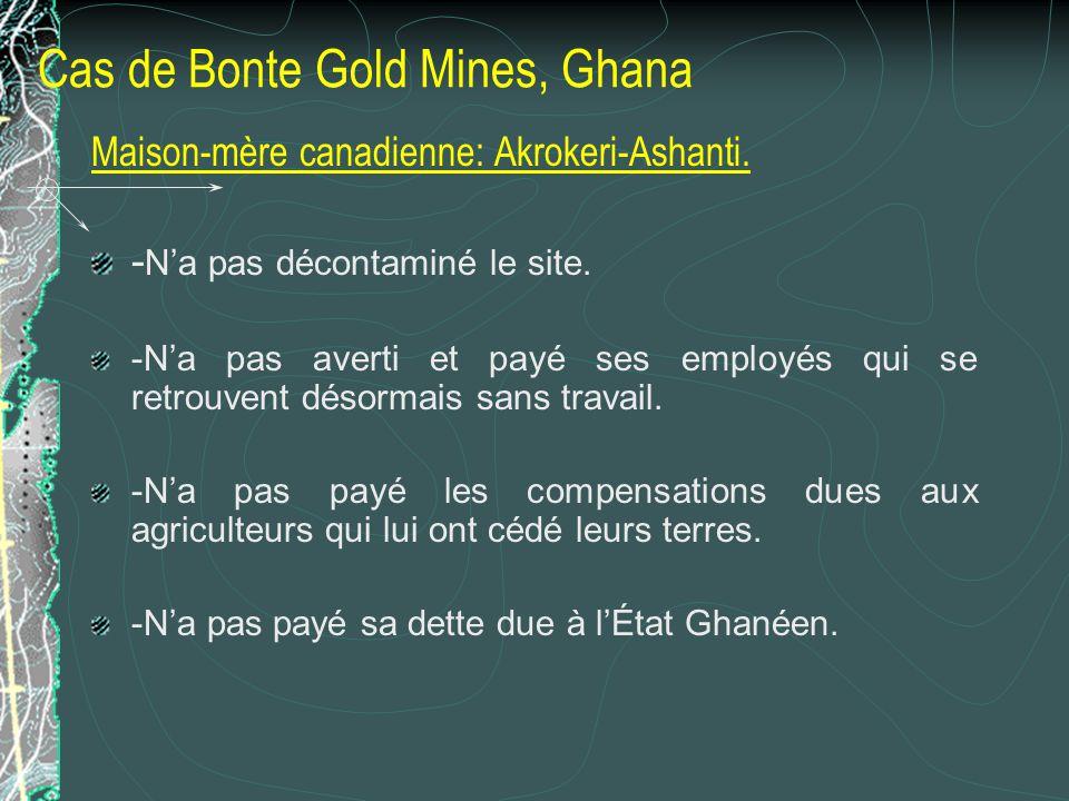 Cas de Bonte Gold Mines, Ghana