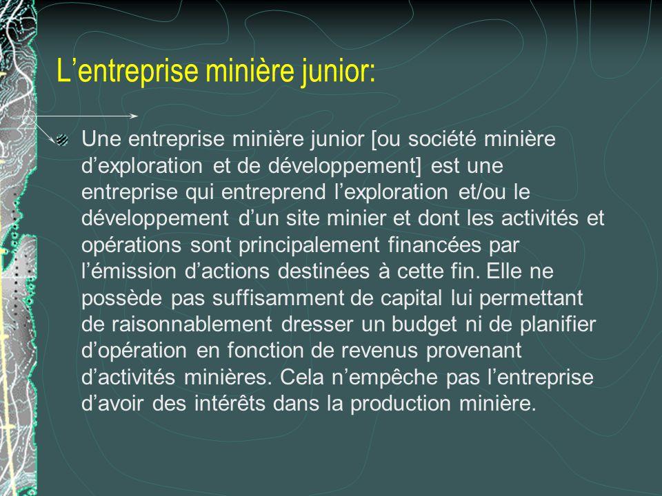 L'entreprise minière junior: