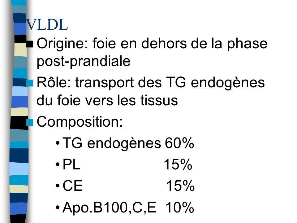 VLDL Origine: foie en dehors de la phase post-prandiale