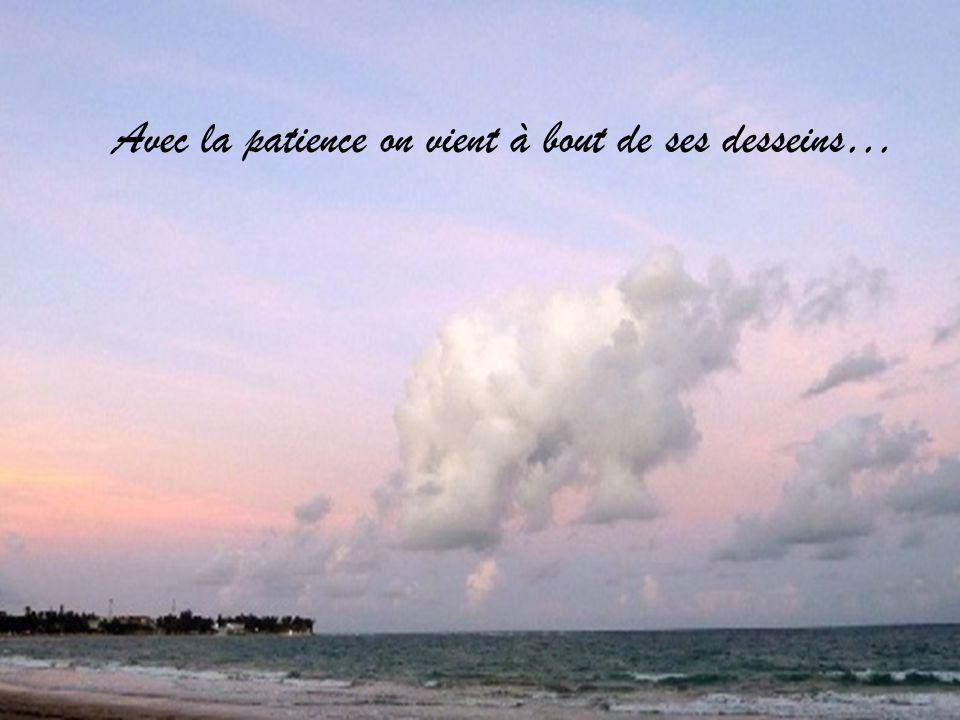 Avec la patience on vient à bout de ses desseins…