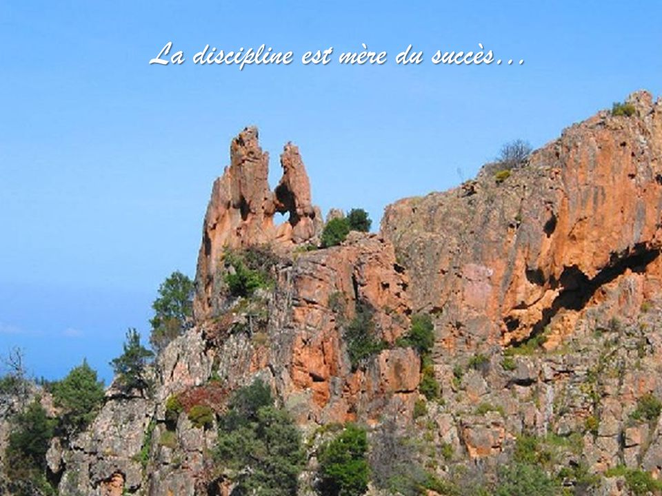 La discipline est mère du succès…