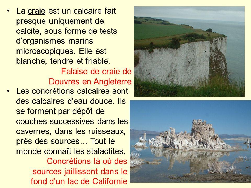 La craie est un calcaire fait presque uniquement de calcite, sous forme de tests d'organismes marins microscopiques. Elle est blanche, tendre et friable.
