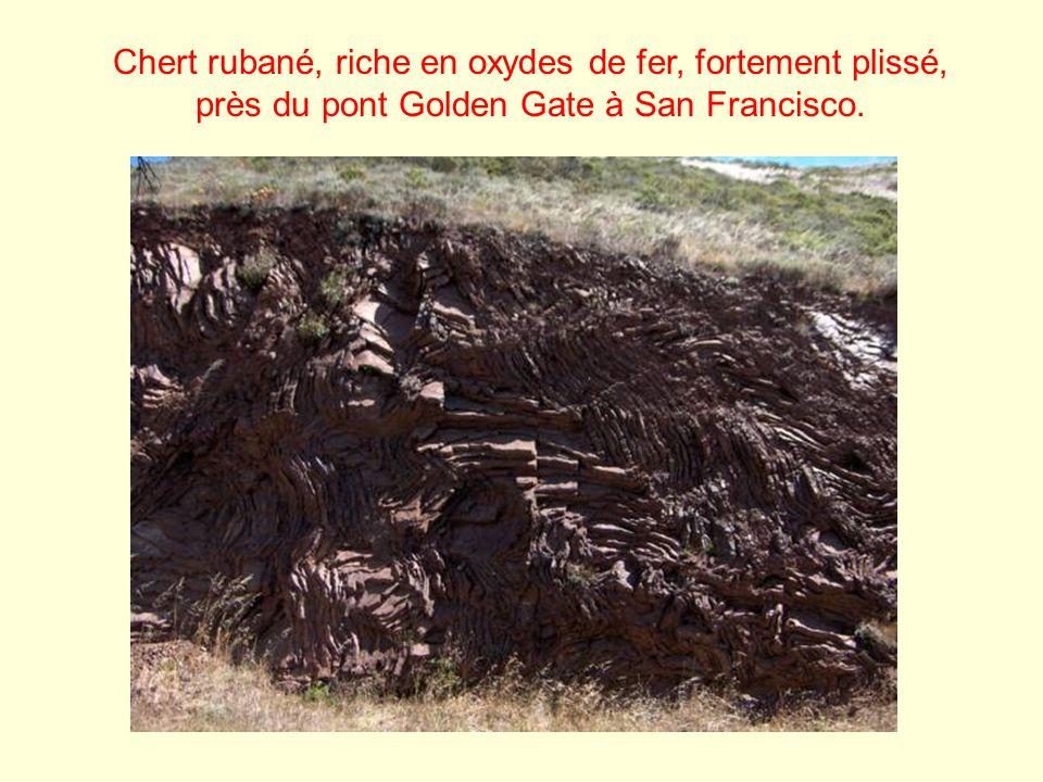 Chert rubané, riche en oxydes de fer, fortement plissé, près du pont Golden Gate à San Francisco.
