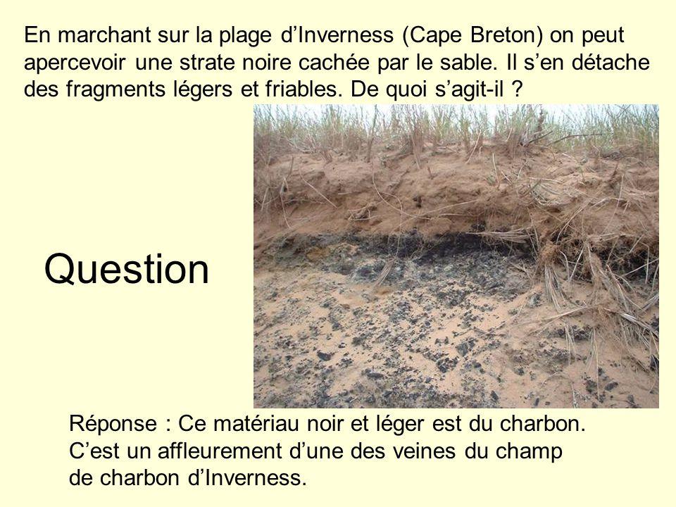 En marchant sur la plage d'Inverness (Cape Breton) on peut apercevoir une strate noire cachée par le sable. Il s'en détache des fragments légers et friables. De quoi s'agit-il