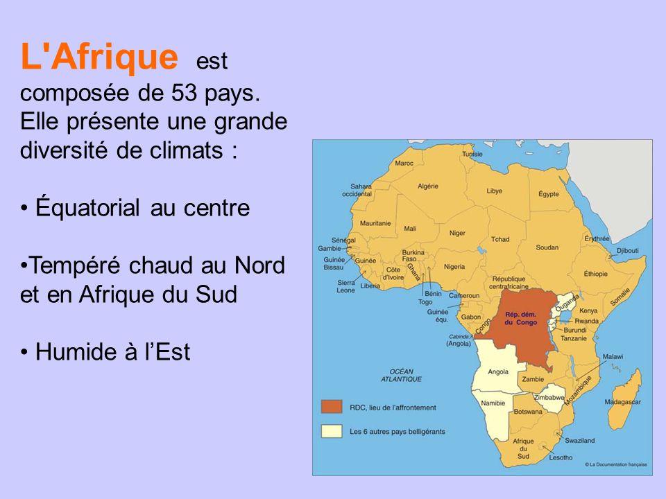 L Afrique est composée de 53 pays.