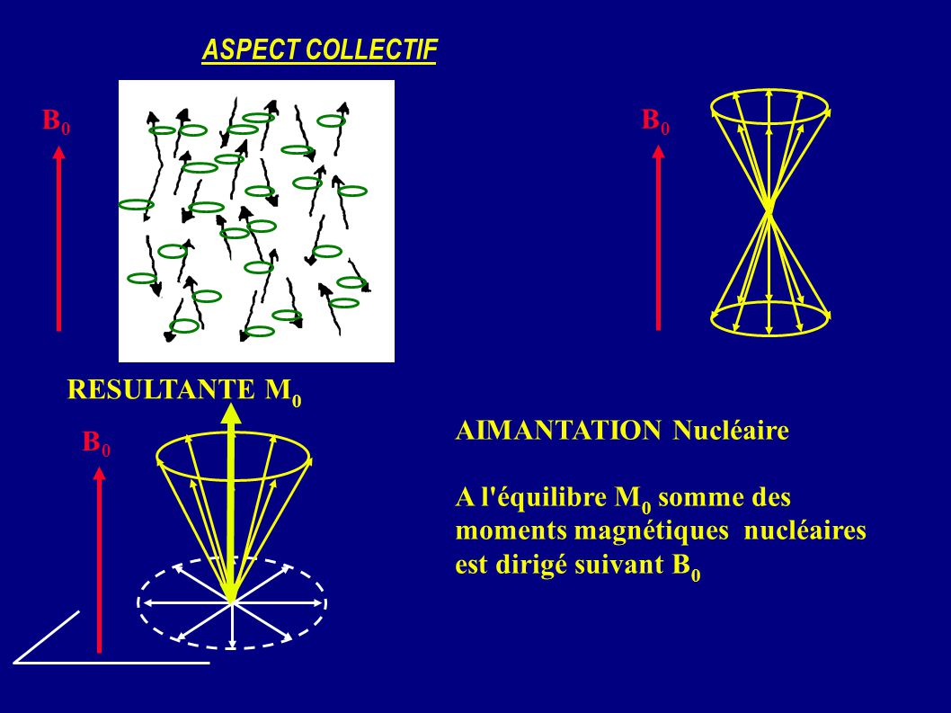 ASPECT COLLECTIF B0. B0. RESULTANTE M0. AIMANTATION Nucléaire. A l équilibre M0 somme des. moments magnétiques nucléaires est dirigé suivant B0.