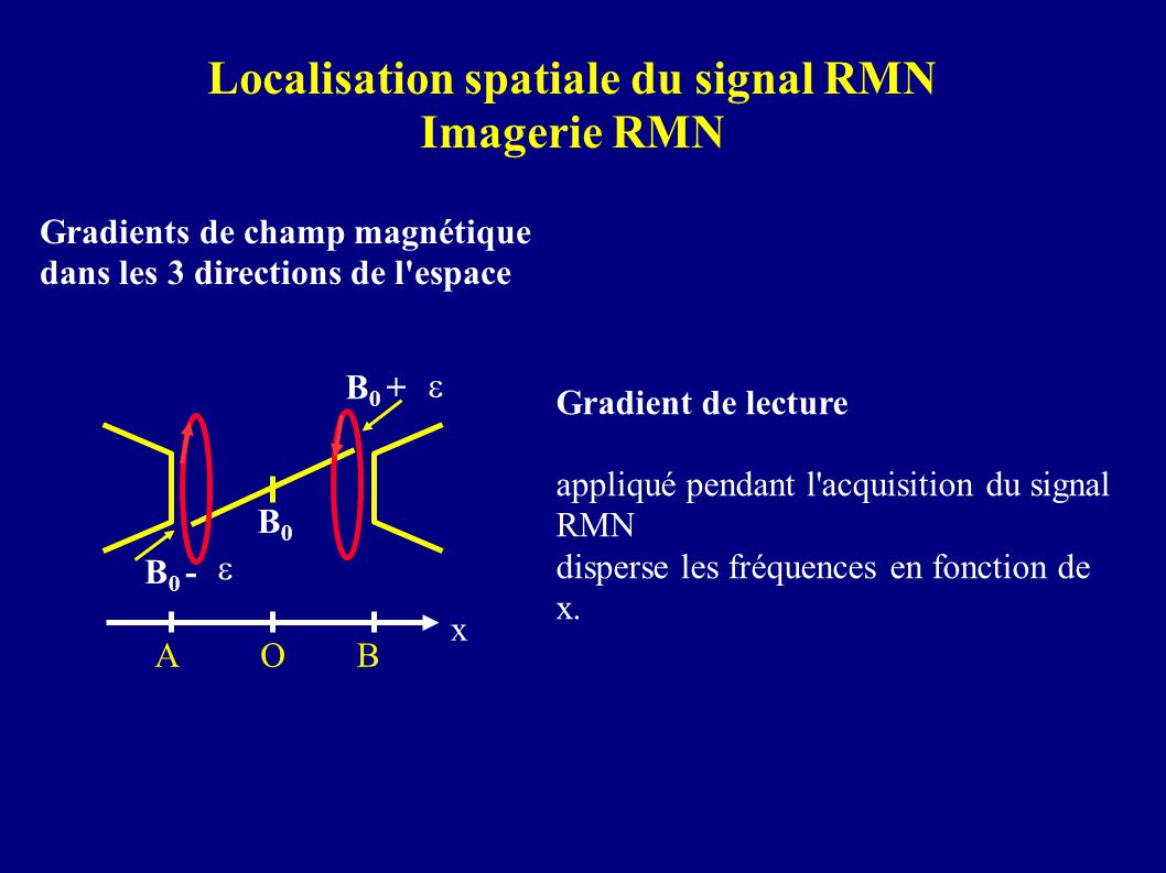 Localisation spatiale du signal RMN