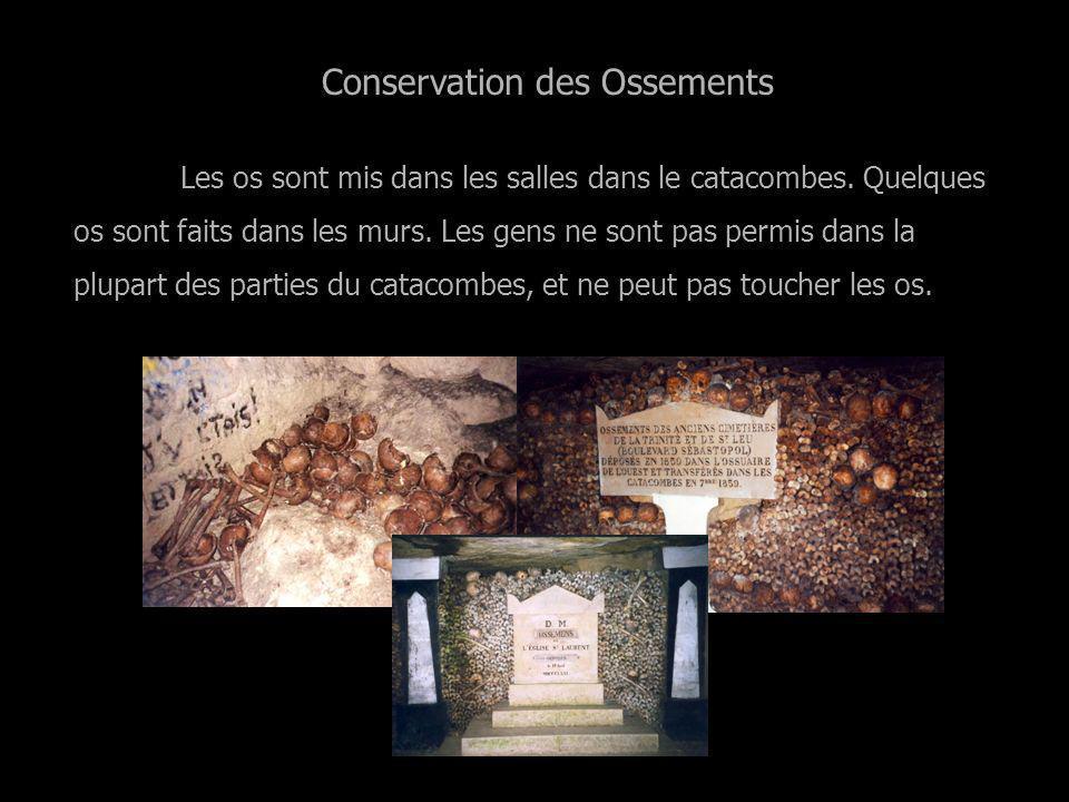 Conservation des Ossements