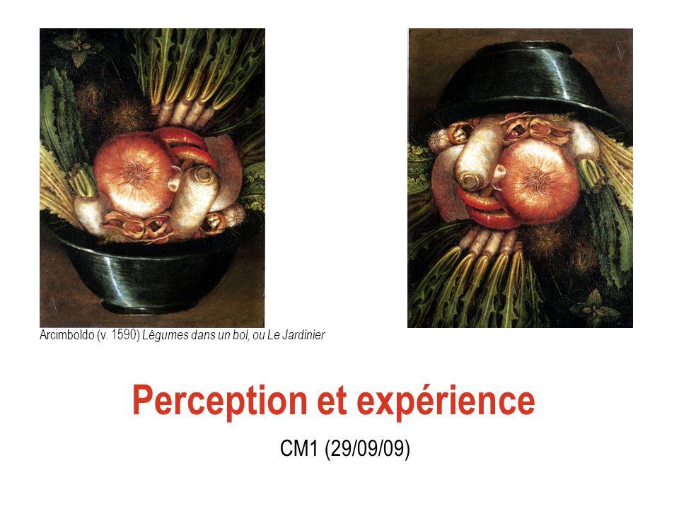 Perception et expérience