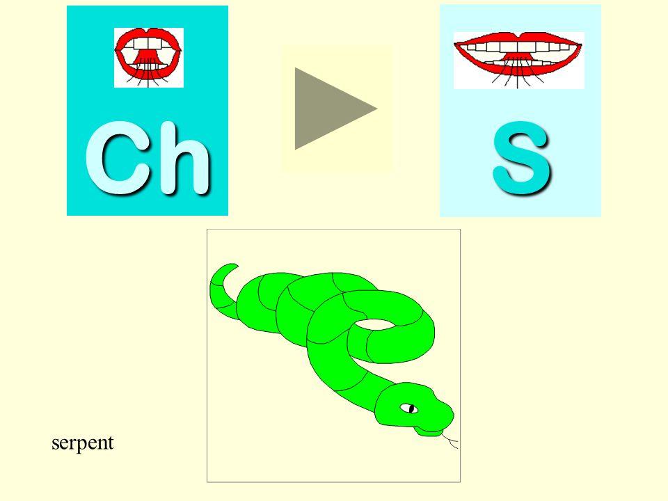 Ch S ini serpent serpent