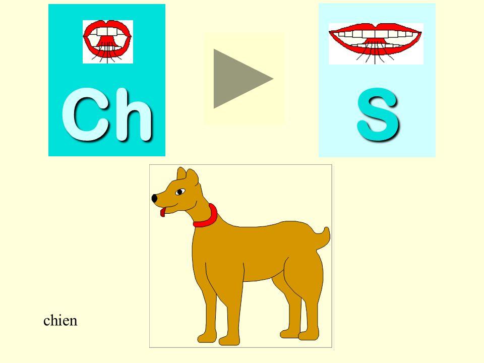 Ch S chien chien
