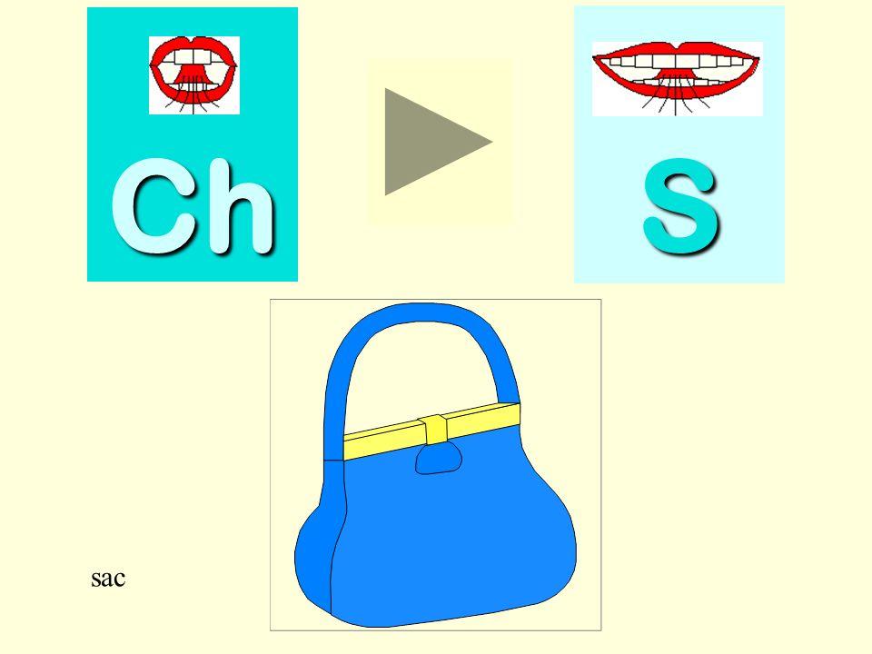 Ch S sac sac