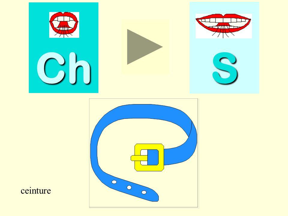Ch S ceinture ceinture
