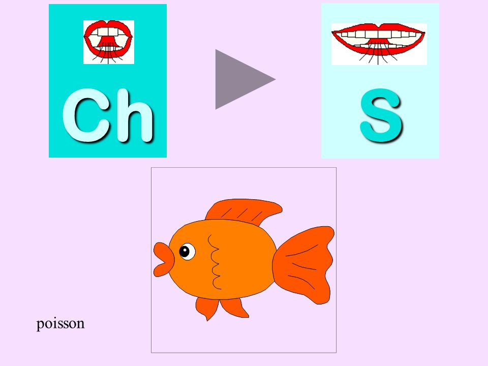 Ch S poisson poisson