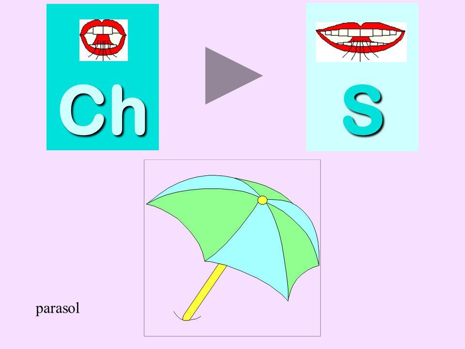 Ch S parasol parasol