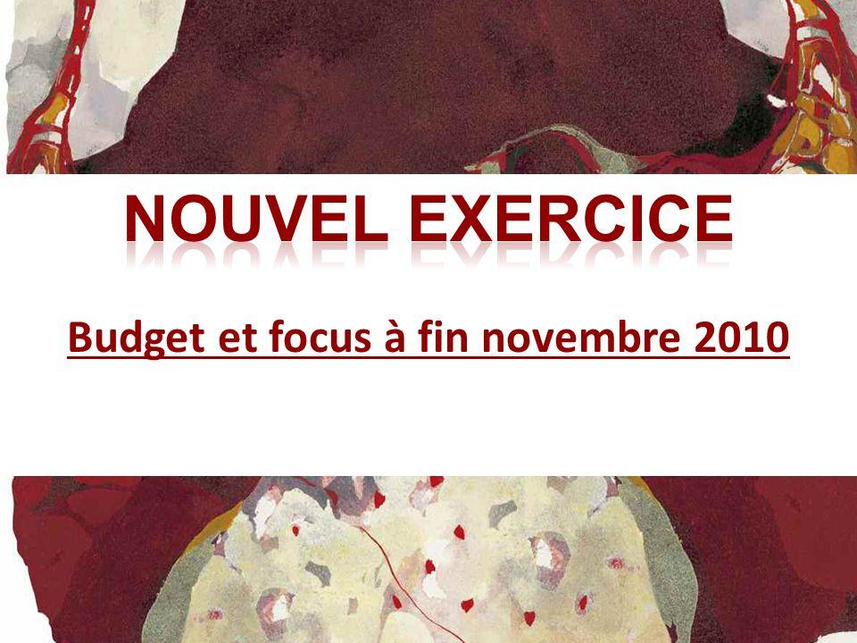 Budget et focus à fin novembre 2010