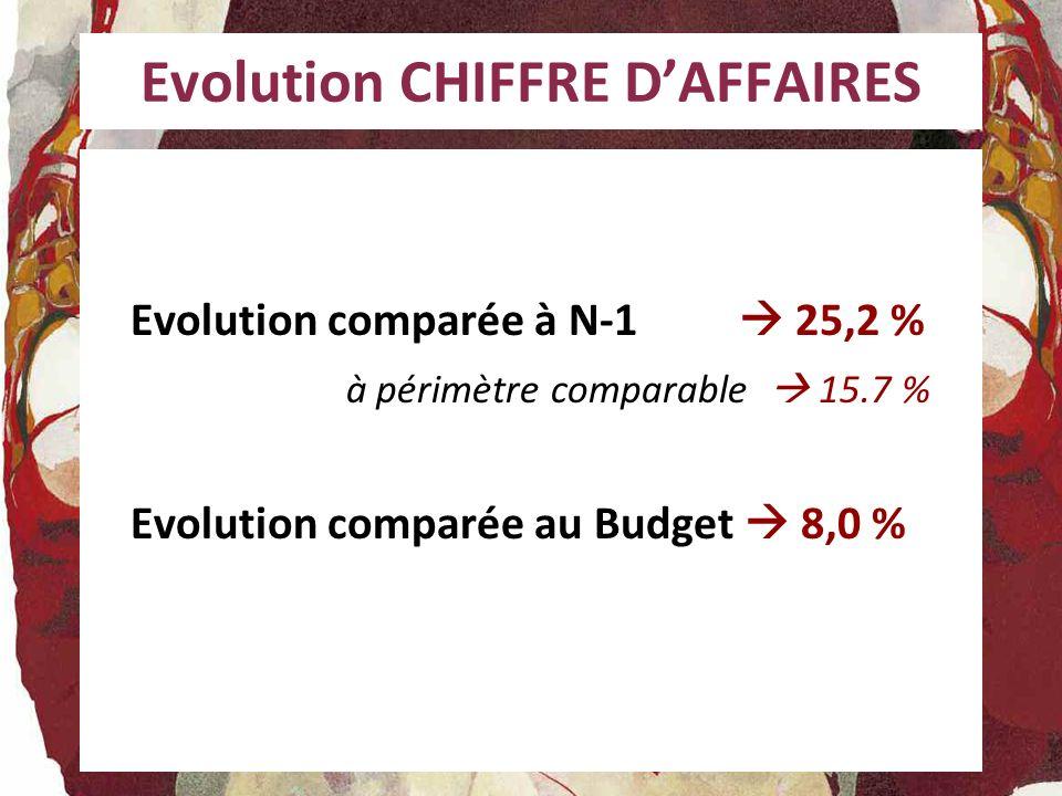 Evolution CHIFFRE D'AFFAIRES