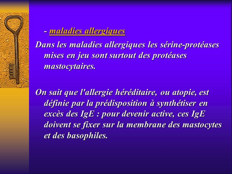 - maladies allergiques
