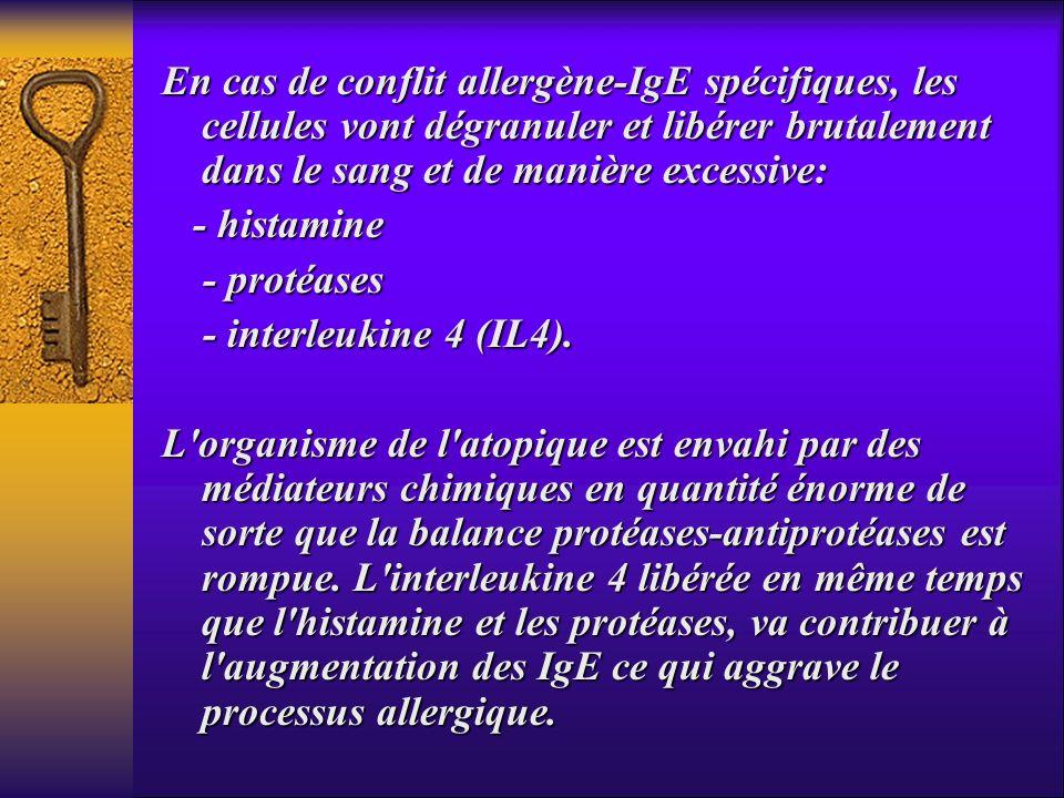 En cas de conflit allergène-IgE spécifiques, les cellules vont dégranuler et libérer brutalement dans le sang et de manière excessive: