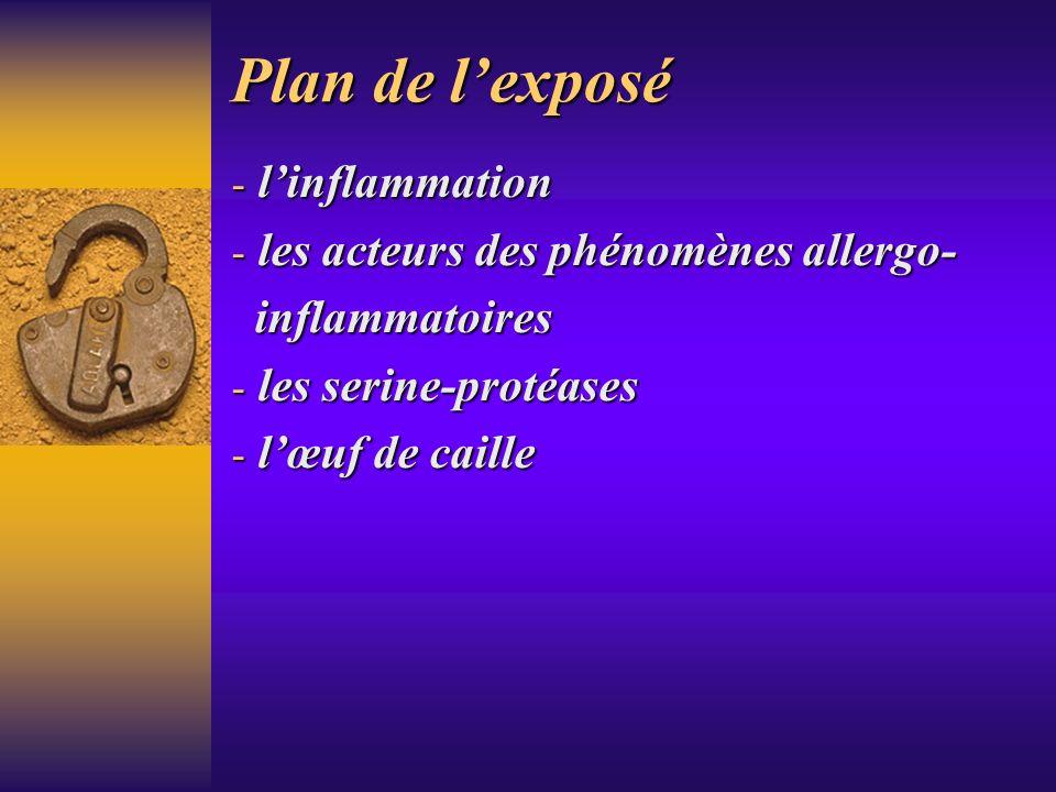 Plan de l'exposé l'inflammation les acteurs des phénomènes allergo-