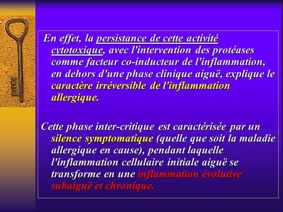 En effet, la persistance de cette activité cytotoxique, avec l intervention des protéases comme facteur co-inducteur de l inflammation, en dehors d une phase clinique aiguë, explique le caractère irréversible de l inflammation allergique.