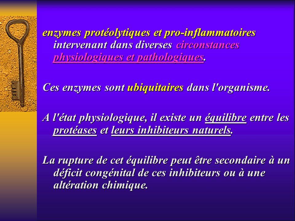 enzymes protéolytiques et pro-inflammatoires intervenant dans diverses circonstances physiologiques et pathologiques.