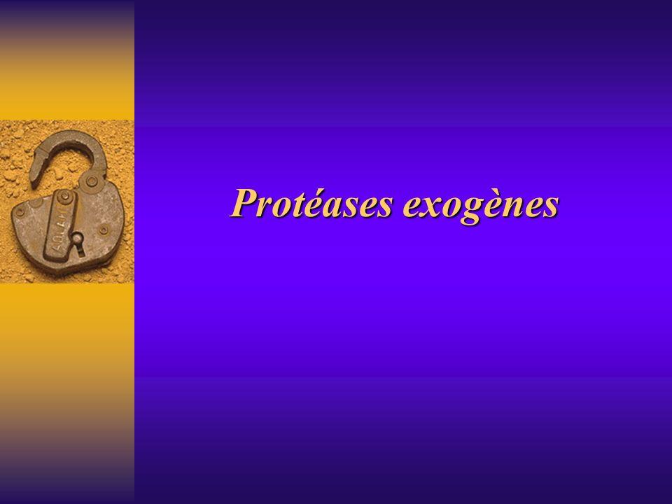 Protéases exogènes