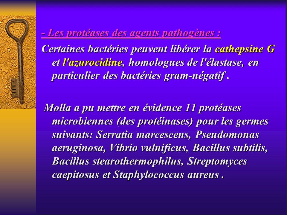 - Les protéases des agents pathogènes :