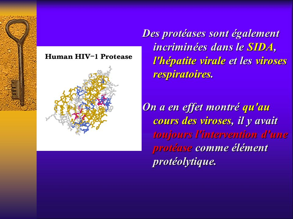 Des protéases sont également incriminées dans le SIDA, l hépatite virale et les viroses respiratoires.