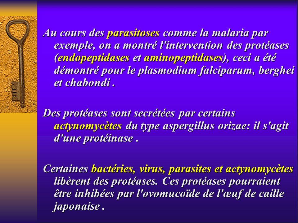 Au cours des parasitoses comme la malaria par exemple, on a montré l intervention des protéases (endopeptidases et aminopeptidases), ceci a été démontré pour le plasmodium falciparum, berghei et chabondi .