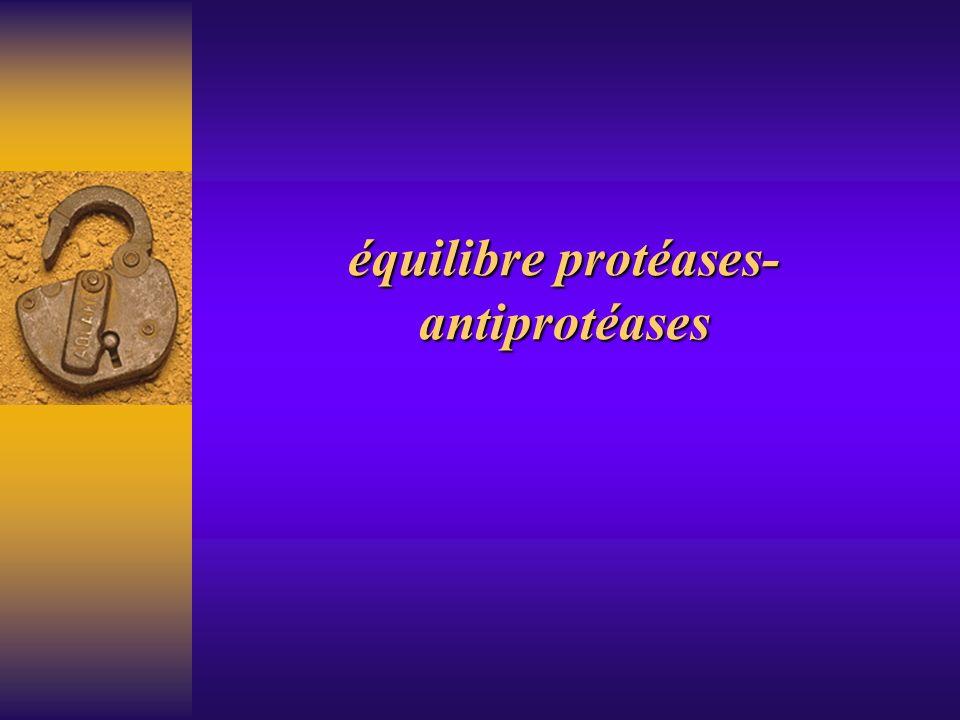 équilibre protéases-antiprotéases