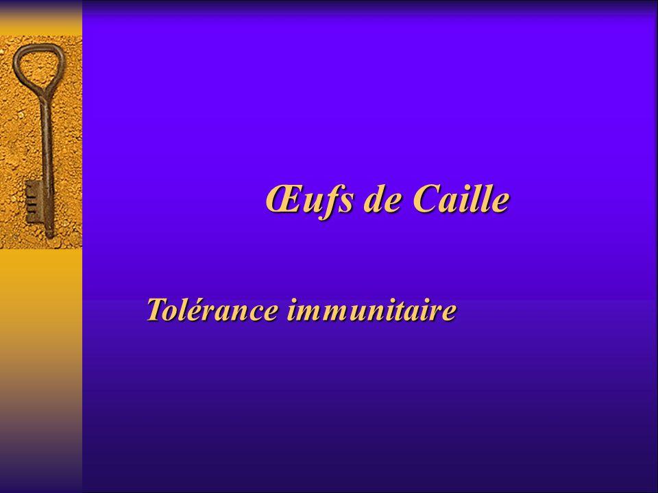 Œufs de Caille Tolérance immunitaire