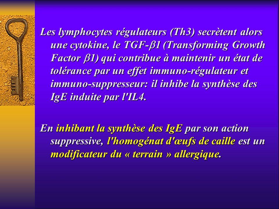 Les lymphocytes régulateurs (Th3) secrètent alors une cytokine, le TGF-1 (Transforming Growth Factor 1) qui contribue à maintenir un état de tolérance par un effet immuno-régulateur et immuno-suppresseur: il inhibe la synthèse des IgE induite par l IL4.
