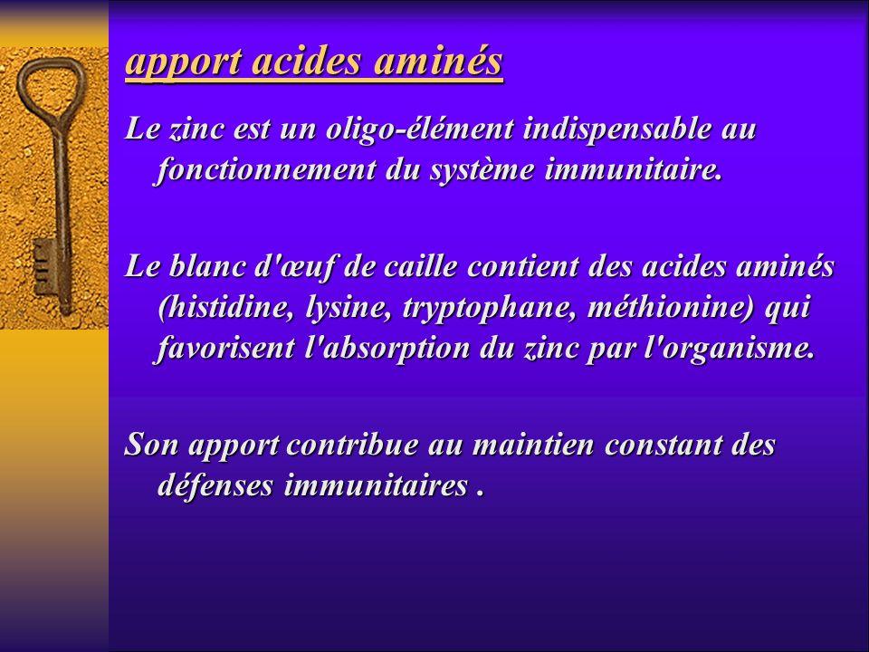 apport acides aminésLe zinc est un oligo-élément indispensable au fonctionnement du système immunitaire.