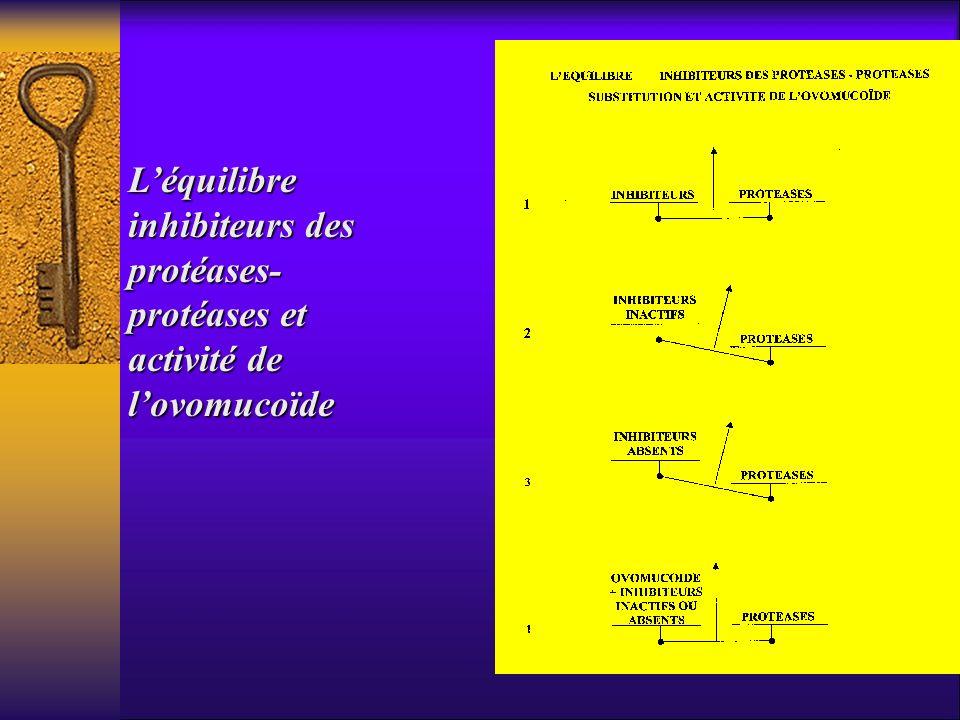 L'équilibre inhibiteurs des protéases- protéases et activité de l'ovomucoïde