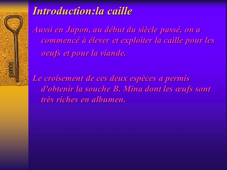 Introduction:la caille