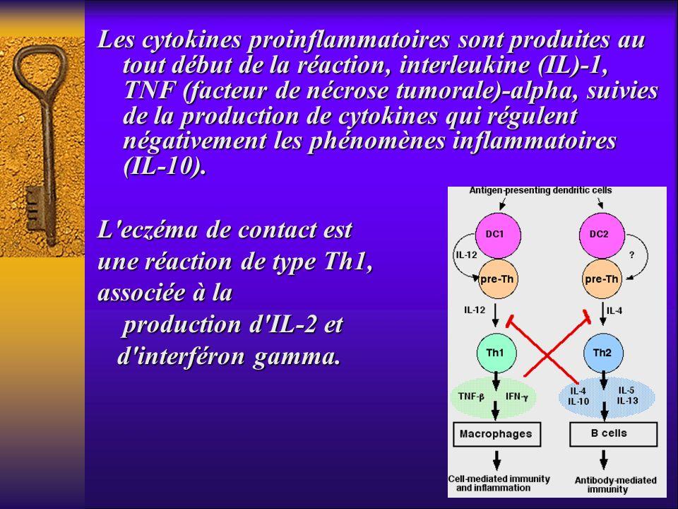 Les cytokines proinflammatoires sont produites au tout début de la réaction, interleukine (IL)-1, TNF (facteur de nécrose tumorale)-alpha, suivies de la production de cytokines qui régulent négativement les phénomènes inflammatoires (IL-10).